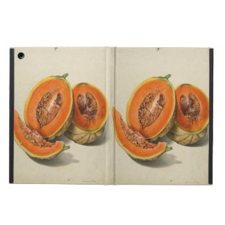 Sliced cantaloupe melon illustration case for iPad air