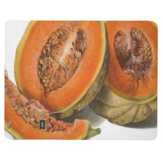 Sliced cantaloupe melon illustration journal