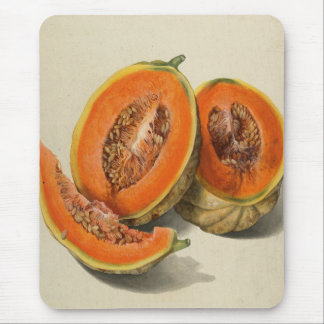 Sliced cantaloupe melon illustration mouse pad
