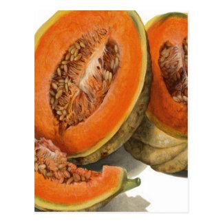 Sliced cantaloupe melon illustration postcard