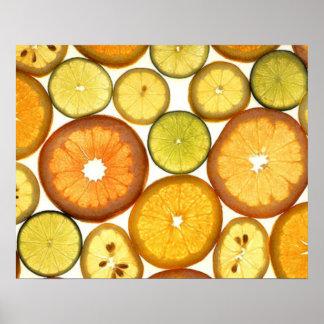 Sliced Citrus Poster