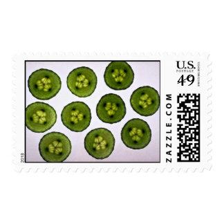 Sliced Cucumbers Postage