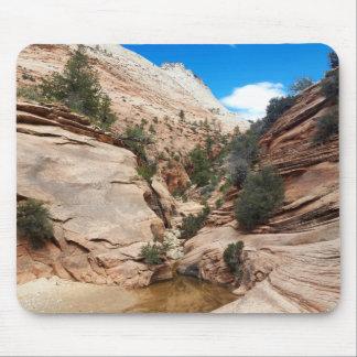 Slick Rock Zion National Park Utah Mouse Pad