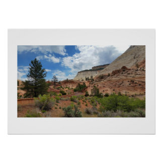 Slick Rock Zion National Park Utah Poster