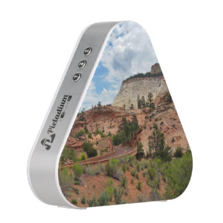 Slick Rock Zion National Park Utah Speaker