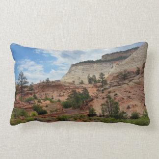 Slick Rock Zion National Park Utah Throw Pillow