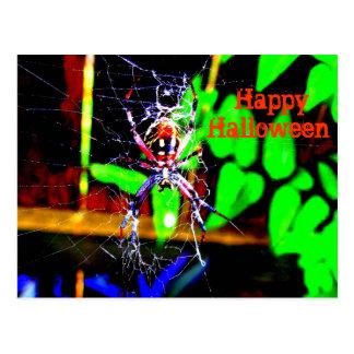 Slider Spider Postcard