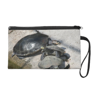 Slider turtles in a row photo wristlet