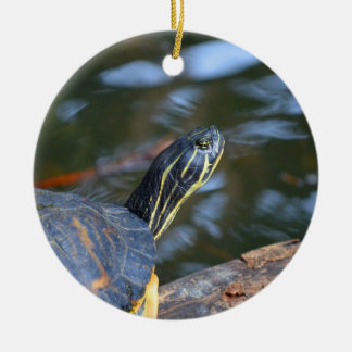 slider water turtle head out of shell ceramic ornament