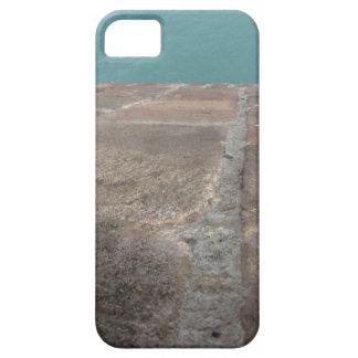 Sliding into the blue sea iPhone SE/5/5s case
