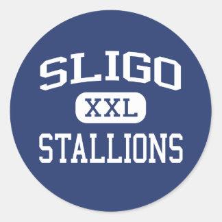 Sligo Stallions Middle Silver Spring Round Stickers