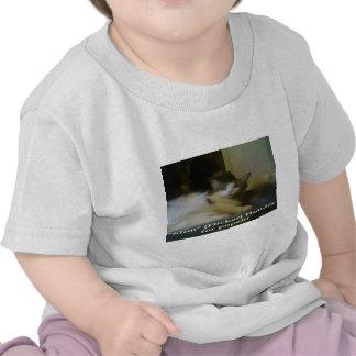 Slim4Popew,enlarged.png Tee Shirt