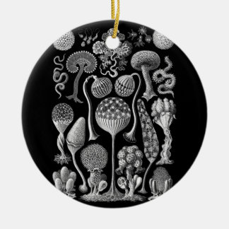 Slime Molds in Black and White Ceramic Ornament
