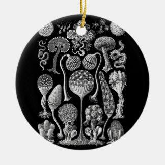 Slime Molds in Black and White Ceramic Ornament