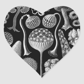 Slime Molds in Black and White Heart Sticker