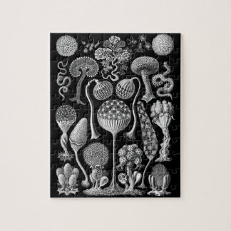Slime Molds in Black and White Jigsaw Puzzle