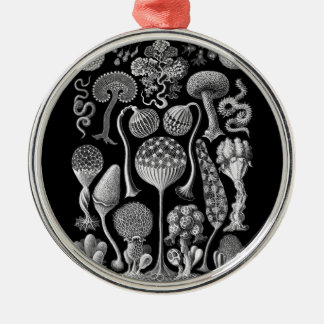 Slime Molds in Black and White Metal Ornament