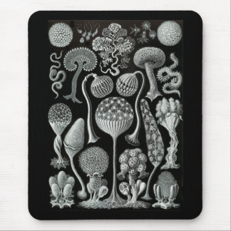 Slime Moulds Mouse Pad