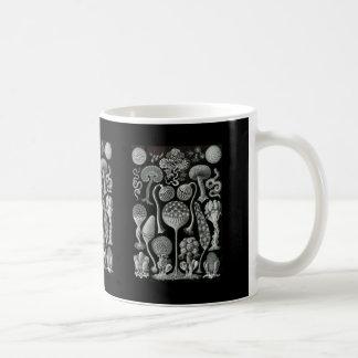 Slime Moulds Classic White Coffee Mug