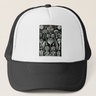 Slime Moulds Trucker Hat