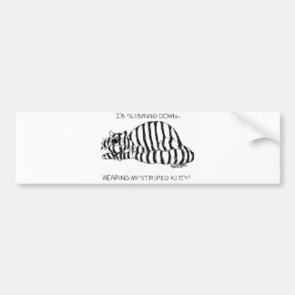 Slimming down wearing my striped kitty! car bumper sticker
