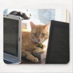 Slinky Cat Behind the Technology Mousepad
