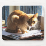 Slinky Cat Paperweight Mousepad