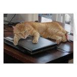 Slinky Cat PC Hug Card