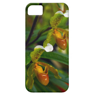 Slipper Orchid iPhone SE/5/5s Case