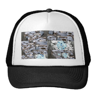 Slippery Mesh Hat