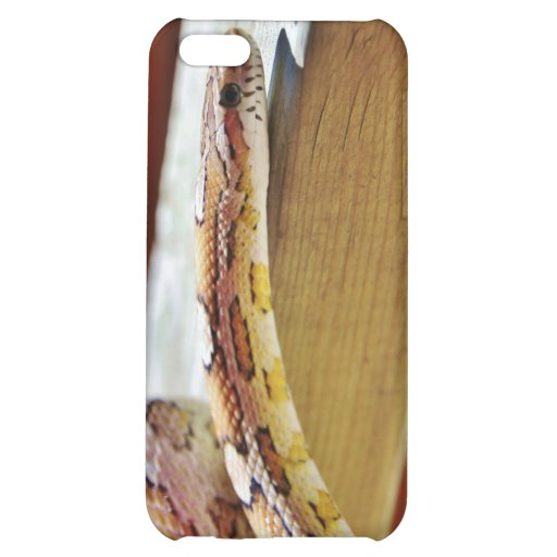 Slithering Red Corn Snake iPhone 5C Case