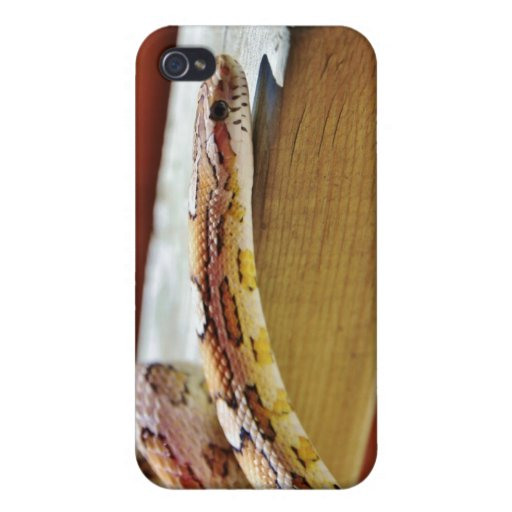 Slithering Red Corn Snake iPhone 4 Covers