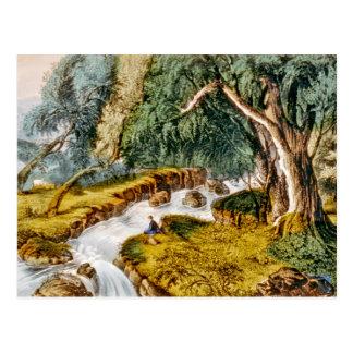 Sliver Cascades--White Mountains Postcard