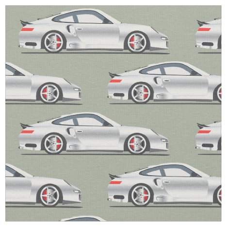 Sliver Exotic Sports Car Fabric