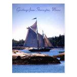 Sloop in Stonington Harbor Postcard