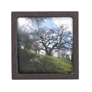 Slope and Oak Keepsake Box
