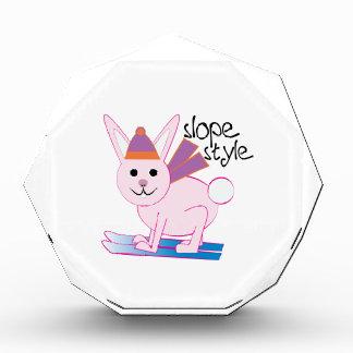 Slope Style Award
