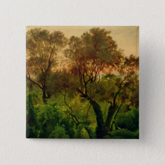 Slope with Olive Trees Pinback Button