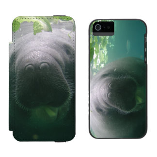 Sloppy Manatee iPhone 5/5S Watson Wallet Case For iPhone SE/5/5s