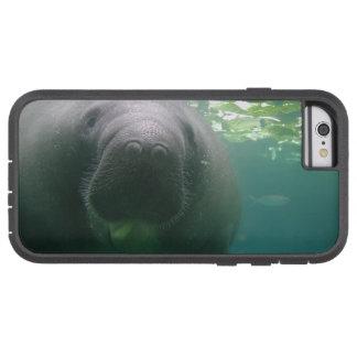 Sloppy Manatee-left-tough iPhone 6 case
