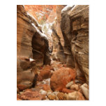 Slot Canyon in Zion National Park Postcard