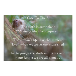 sloth3-2, An Ode To The SlothThe sloth is somno... Poster