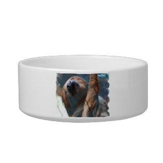 sloth-15.jpg pet bowls
