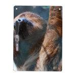 sloth-15.jpg pizarras blancas de calidad