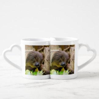 Sloth_20171107_by_JAMFoto Coffee Mug Set