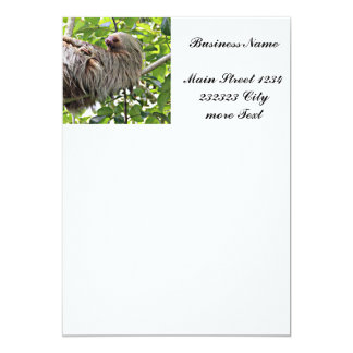 Sloth 2 card