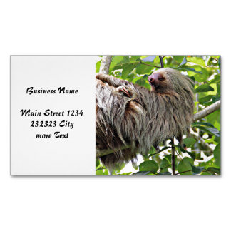Sloth 2 magnetic business card