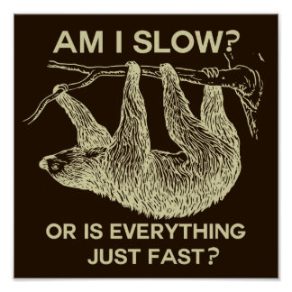 Sloth Am I Slow? Poster