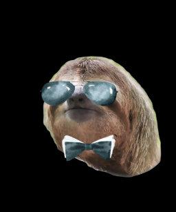 black sloth posters photo prints zazzle