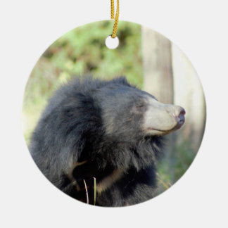 Sloth Bear Photo Ornament